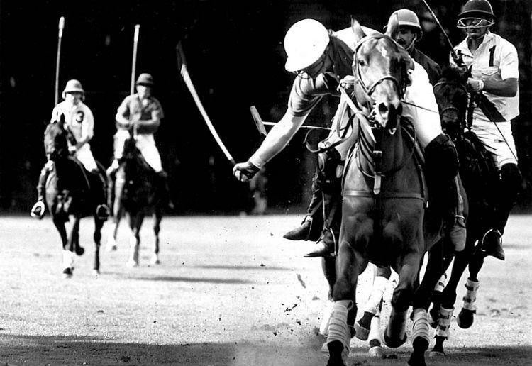 Roland-Cosequin-Horse